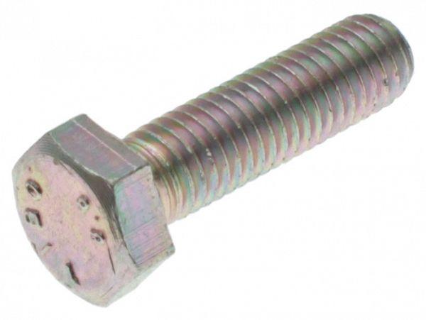 Bolt for brake caliper