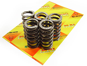 Coupling springs - Malossi Racing