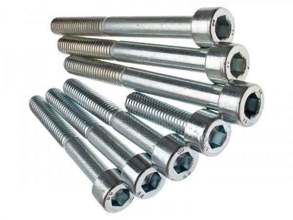 Crankcase Bolt Set - Zoot