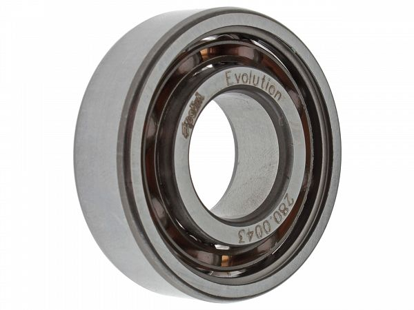 Crankshaft Bearing - Polini Evolution
