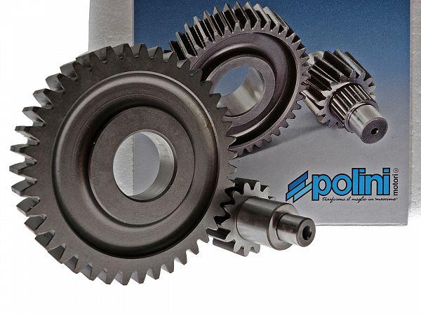 Gearing - Polini sekundær 14/41