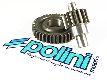 Gearing - Polini sekundær 15/49