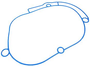 Tilbehør - O-ring til Polini Evolution geardæksel